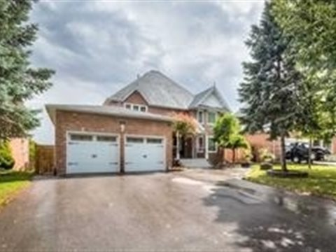 19 Grovepark St Bsmt, Richmond Hill