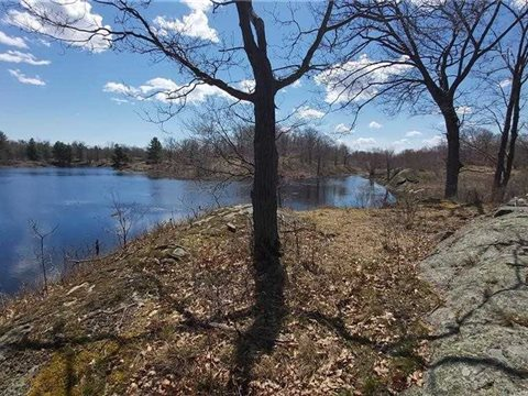 Lot 6 Concession 3 Oso Rd, Central Frontenac